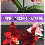 Amaryllis Flower Bouquet Crochet Free Pattern - Video