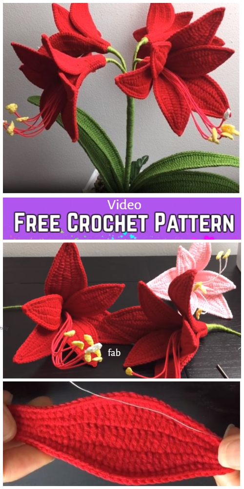 Amaryllis Flower Bouquet Crochet Free Pattern - Video