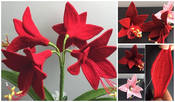 Crochet Amaryllis Flower Bouquet Crochet Free Pattern - Video