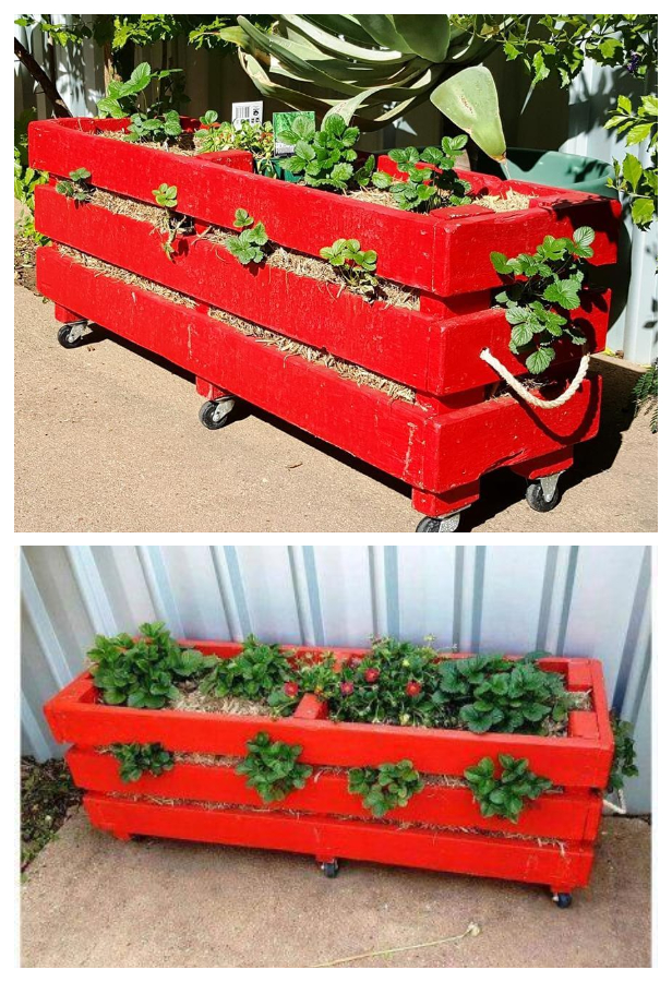 DIY Vertical Pallet Strawberry Planter Tutorials - Video