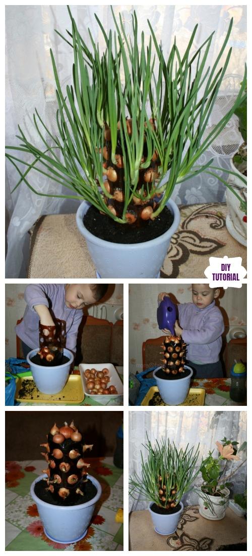 DIY Plastic Bottle Vertical Onion Tower Planter Tutorial