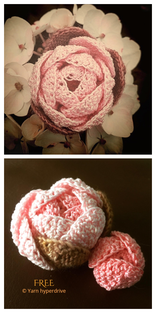 Peony Flower Free Crochet Patterns